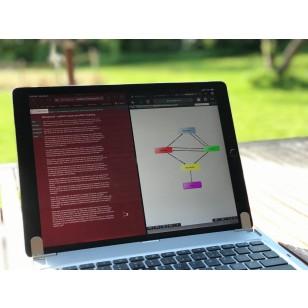 Online Training: Qualitative Modeling (Corona Solidarity Price)