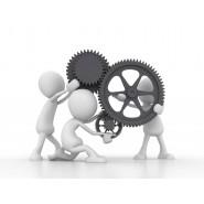 REMOTE Coaching & MODELN ( 15 Minuten)